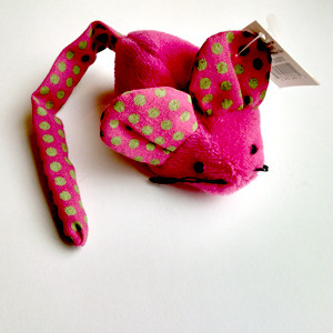 cattoy