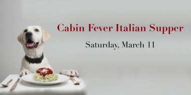 CabinFever2017B - Version 2